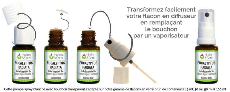 usage huile essentielle eucalyptus radiata